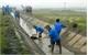 Việt Yên: Mỗi đảng viên đăng ký từ 1- 2 việc làm theo Bác
