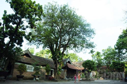 Quảng bá bản sắc văn hóa, tiềm năng du lịch chùa Vĩnh Nghiêm