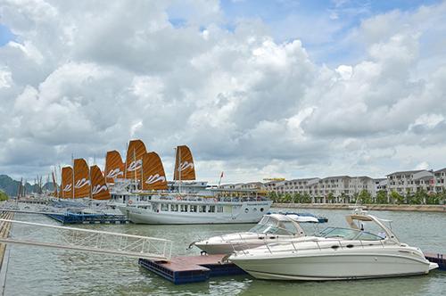 Tuyển dụng, Tuần Châu, du thuyền, Quảng Ninh