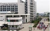 Việt Yên: Đứng đầu khối địa phương trong toàn tỉnh về chỉ số PCI