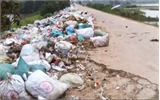 Bãi rác tự phát chiếm bờ đê
