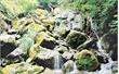 Phật Sơn có suối Nước Vàng