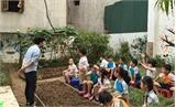 Giáo dục toàn diện cho trẻ: Vài giờ trải nghiệm là chưa đủ