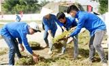 Yên Dũng: Hơn 1.000 ĐVTN hưởng ứng Chiến dịch tình nguyện