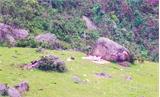 Bảo vệ môi trường khu du lịch Đồng Cao