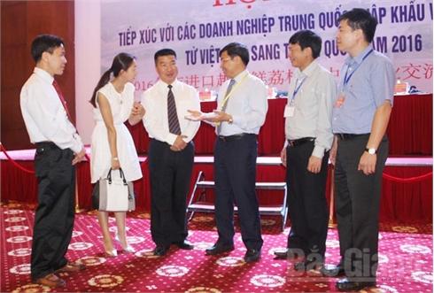 Tạo điều kiện thuận lợi nhất để  vải thiều thông quan ở cửa khẩu Lào Cai