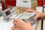 Từ ngày 1-6: Doanh nghiệp xuất khẩu lại được vay vốn ngoại tệ