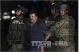 Trùm ma túy 'El Chapo' chống lại quyết định dẫn độ sang Mỹ