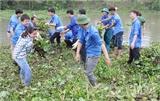 Bắc Giang: Phát động Chiến dịch thanh niên tình nguyện hè 2016