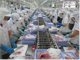EU cảnh báo các cơ sở xuất khẩu thủy sản Việt Nam
