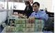 Bắc Giang: Gần 500 tỉ đồng cho vay tiêu thụ và chế biến vải thiều