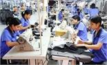 TP Bắc Giang: Kiểm tra thực hiện pháp luật lao động tại 14 doanh nghiệp