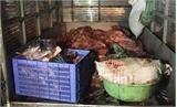 Vận chuyển sản phẩm động vật không có chứng nhận kiểm dịch