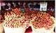 Tuần lễ vải thiều Lục Ngạn - Bắc Giang  tại Hà Nội:  Tiêu thụ gần 40 tấn vải thiều