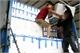 Giá vải thiều xuất khẩu qua các cửa khẩu Lạng Sơn dao động từ 35- 40 nghìn đồng/kg