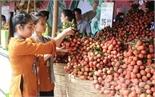Tiêu thụ hơn 43 tấn vải thiều qua các siêu thị ở Hà Nội