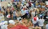 Bắc Giang: Tiêu thụ vượt dự báo gần 2 nghìn tấn vải thiều