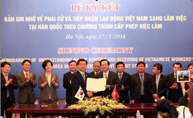 Công ty cổ phần Quốc tế ICO,  thông báo, đào tạo,  tiếng Hàn Quốc