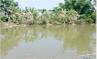 Bắc Giang: Theo người thân về quê chơi, 2 trẻ tử vong do đuối nước