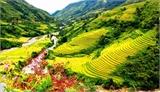 Để du lịch thành ngành kinh tế mũi nhọn