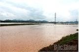 Bắc Giang: Khẩn trương khắc phục hậu quả bão số 1