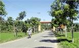 Phủ xanh đường nông thôn