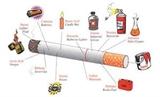 Tuyên truyền phòng, chống tác hại của thuốc lá