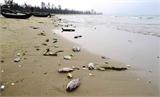 Lập Ban chỉ đạo về giải pháp ổn định đời sống nhân dân bị ảnh hưởng sự cố môi trường