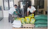 Tận dụng phụ phẩm làm thức ăn chăn nuôi: An toàn, giảm chi phí