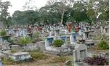 Thông báo di dời Nghĩa trang Bình Hưng Hòa