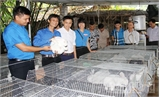 Ra mắt HTX Thanh niên lập nghiệp xã Minh Đức