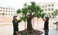 Ban CHQS huyện Tân Yên: Xây dựng doanh trại điểm chính quy