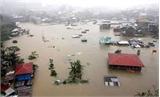 Thiên tai, bão lũ gây thiệt hại gần 8,7 nghìn tỷ đồng