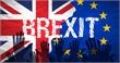 Hậu Brexit: Xu hướng liên kết nhóm gia tăng trong EU