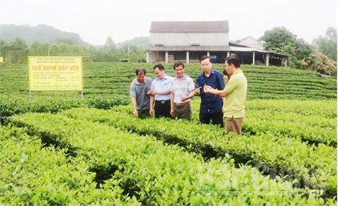 UBND tỉnh Bắc Giang phê duyệt 48 loại nông sản chủ lực, đặc trưng
