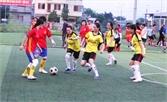 10 đội tham gia  Giải bóng đá nữ công nhân các KCN