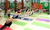 Bùng nổ phong trào luyện tập Yoga