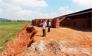 Vi phạm xâm lấn đất lúa: Vẫn xử lý nửa vời