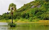 Những điểm đến là có ảnh đẹp ở An Giang
