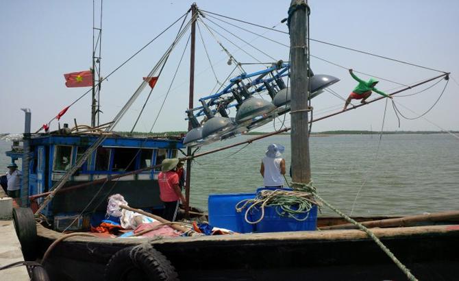 Nhật Bản, trang bị, đèn LED, miễn phí, tàu cá, Việt Nam