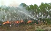 Diễn tập phòng cháy, chữa cháy rừng cụm xã năm 2016