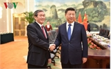 Chủ tịch Trung Quốc Tập Cận Bình tiếp đồng chí Đinh Thế Huynh