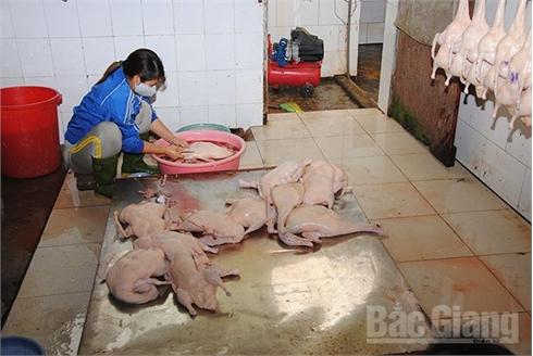 Kiểm soát giết mổ động vật, nhiều khâu còn bỏ ngỏ