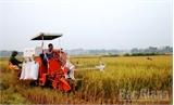 Việt Yên: Dồn sức cho tiêu chí khó