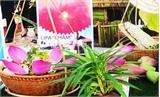 Hội thi ẩm thực du lịch Bình Thuận năm 2016