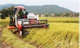 Đẩy mạnh tái cơ cấu nông nghiệp, nâng cao đời sống nông dân