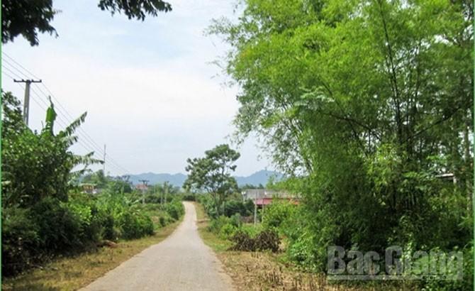 Waking up, Khuon Than, sleeping beauty