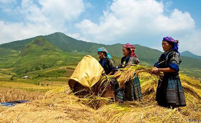 Hỗ trợ, phát triển, KTXH, vùng dân tộc, thiểu số, miền núi