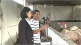Sử dụng hầm khí Biogas, cải thiện môi trường nông thôn tại Yên Dũng