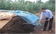 Quy trình ủ phân hữu cơ từ phân chuồng